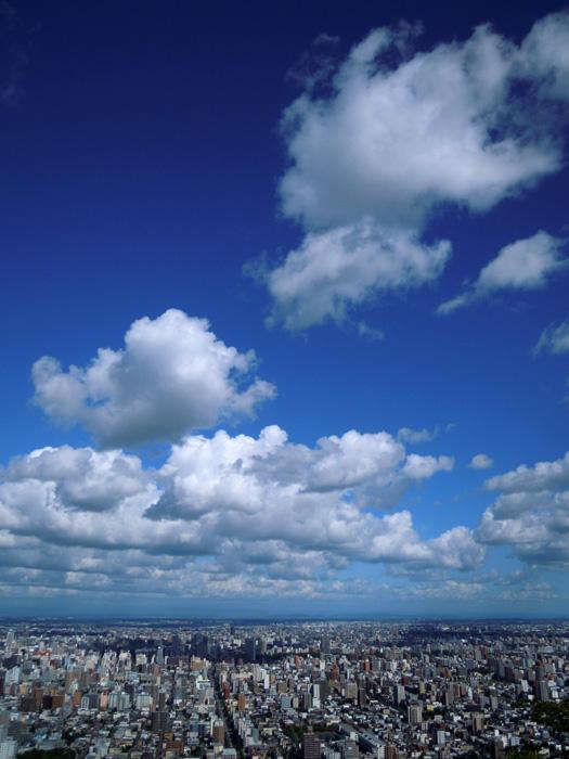 本日の円山頂上からの眺め。