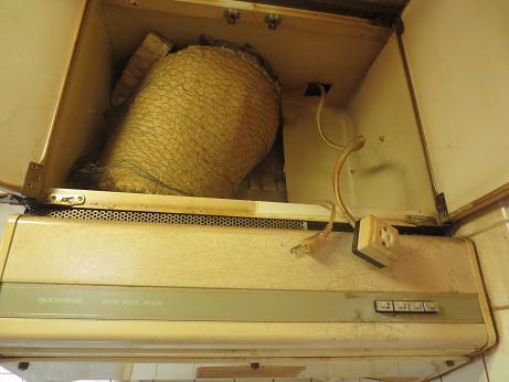 漏電換気扇コンセント