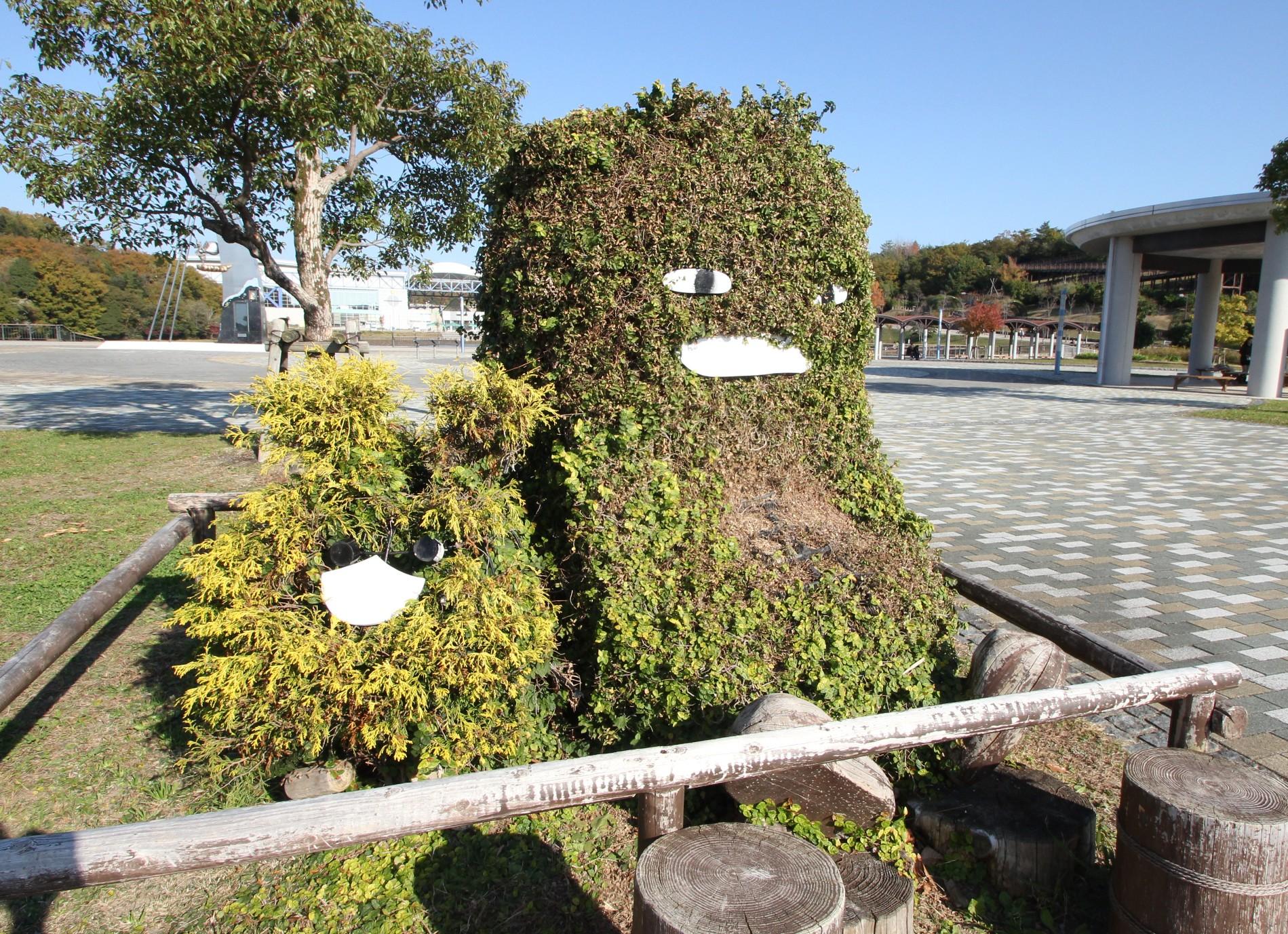 モリコロ植木