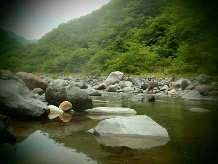 2013 鬼怒川水系4 (9)