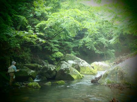 2013 那珂川水系3(2)