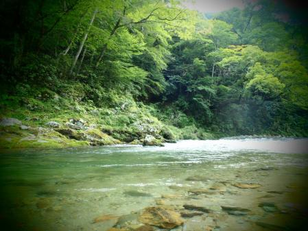 2013 那珂川水系4 (8)
