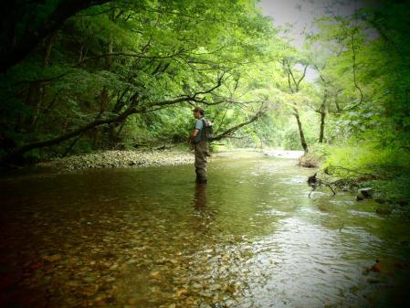 2013 那珂川水系5 (5)