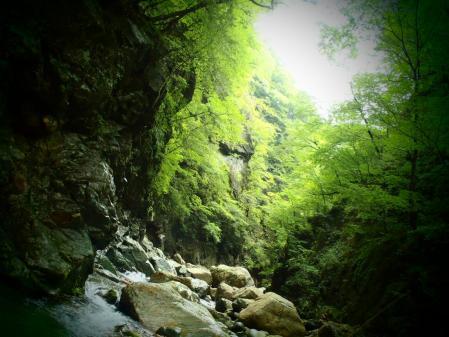 2013 那珂川水系7 (4)