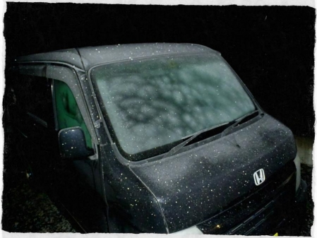 2013.11.12初霜