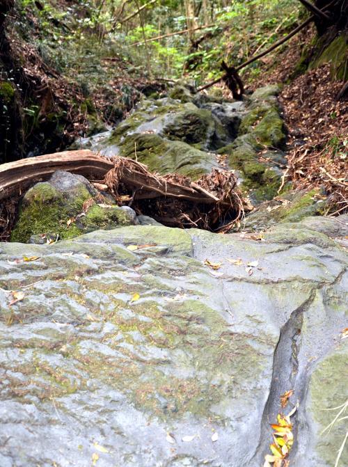 溶岩流は旧航路識別所(送信所)近くまで達した...
