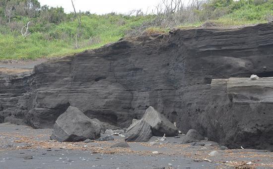 アワイ泥質砂岩