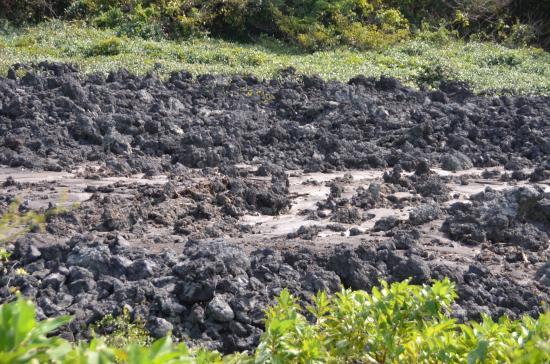 1986年噴火のC6溶岩流