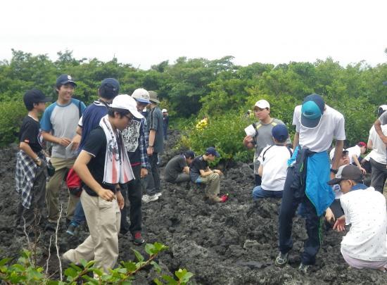 割れ目噴火 C6溶岩流末端