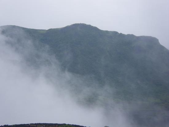 白石山緑靄(りょくあい)