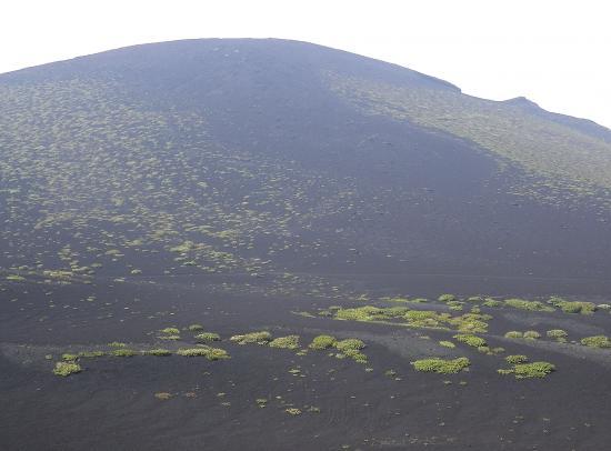 今日の三原山は美しい