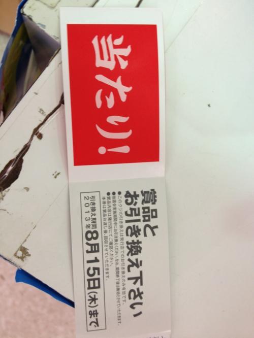 繧、繧ェ繝ウ_convert_20130815234854