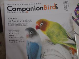 P6248378_convert_20130626162439.jpg