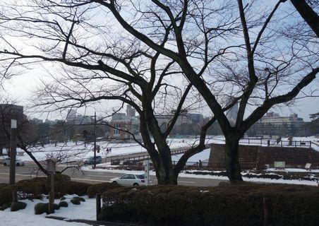 兼六園冬景色
