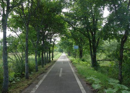 人影のない自転車道