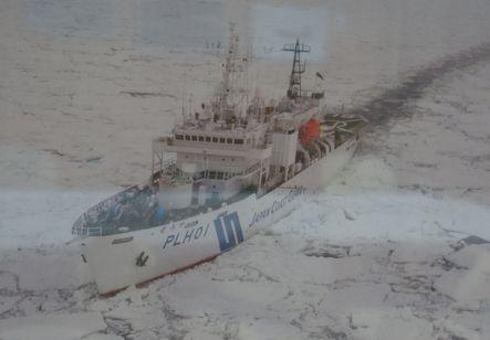 氷の海が活動場所