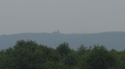 湿原展望台を望む