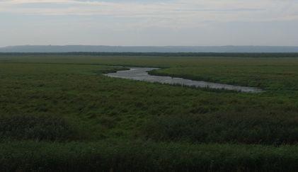 湿原・蛇行する川