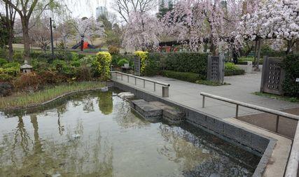 池は浅く復元