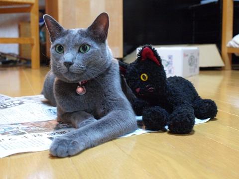 お迎え記念日05(2011.09.24)