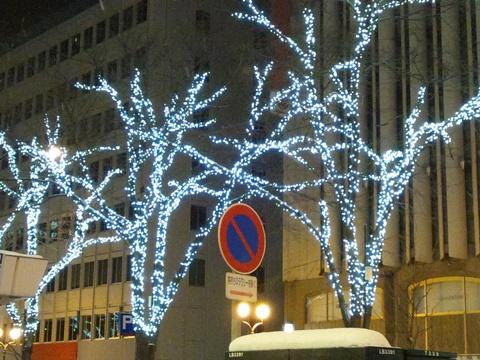 日遅れクリスマス08(2013.12.29)