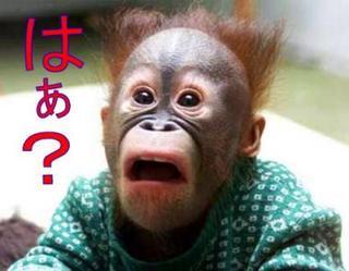 haa_monkey.jpg