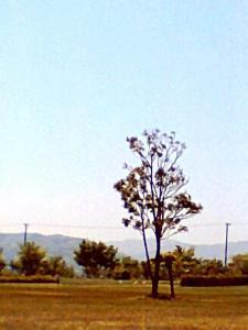 20130514.jpg