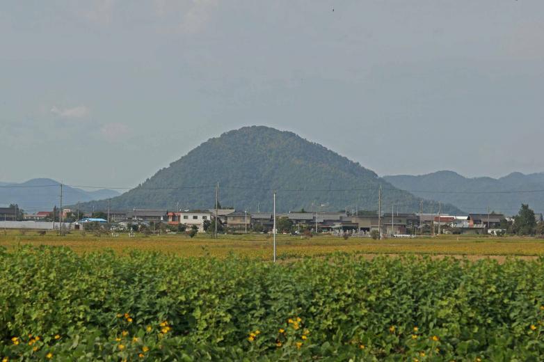 103yamamoto