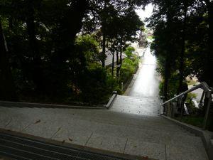 山王さん階段おりる