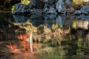 嵐山渓谷の紅葉 B