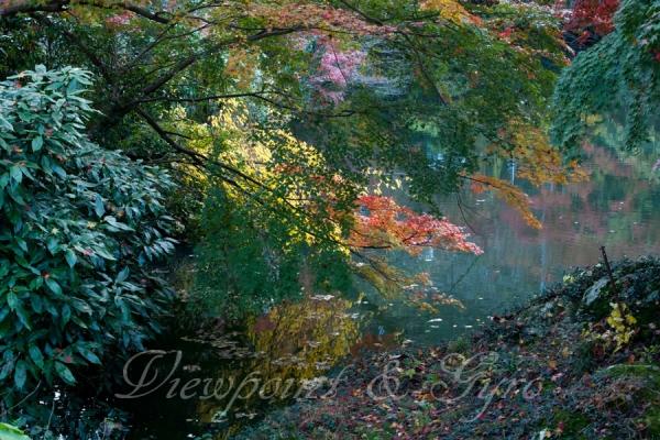 北鎌湖の紅葉 I
