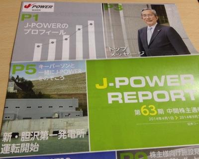 9513 電源開発 中間報告書
