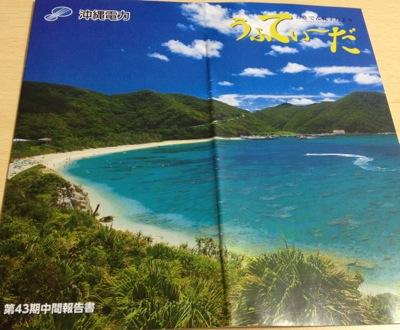 9511 沖縄電力 中間報告書