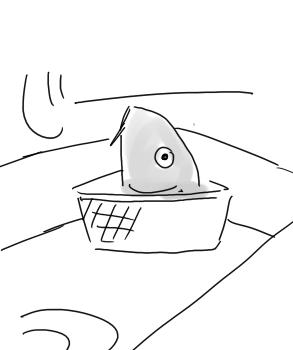 鯉のおかしら