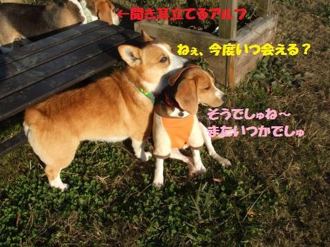 038_convert_20131211063432.jpg