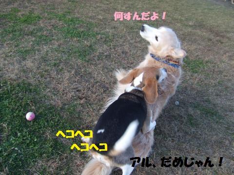051_convert_20131211063749.jpg