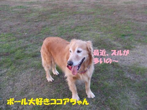055_convert_20131202013726.jpg