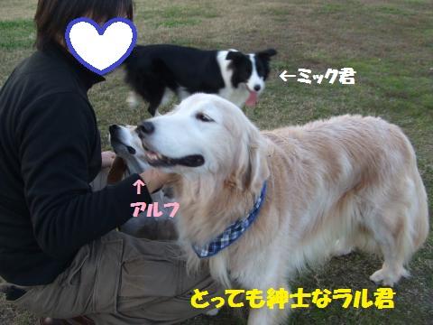 056_convert_20131202013632.jpg