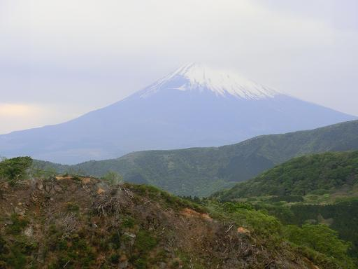 okinawa 736-1