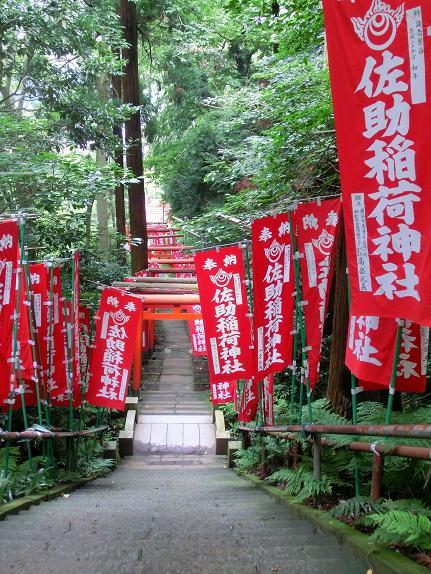 okinawa 894-1