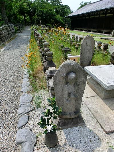 okinawa 841-1