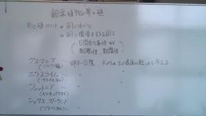 20130709101155.jpg