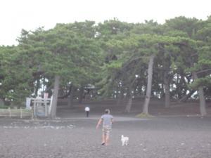 2013/09/07ブログ用 004
