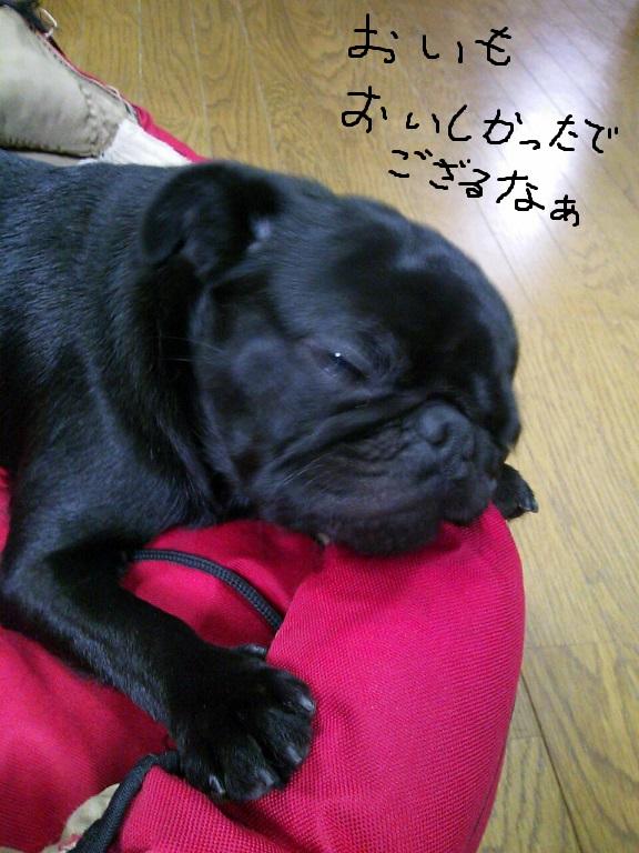 20131125_093919お芋の夢縮小