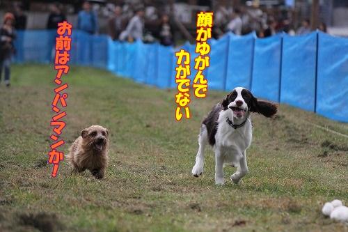 2013.11.2~4清里旅行 159