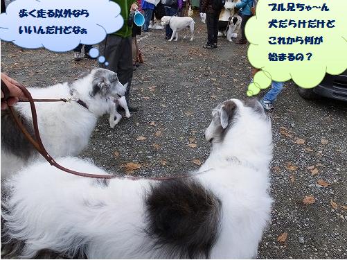 2013.11.2~4清里旅行その2 099