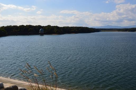 11月の多摩湖4