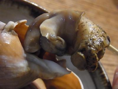 家飲み つぶ貝 (3)