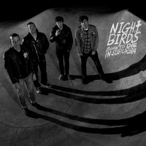 NIGHT BIRDS 2