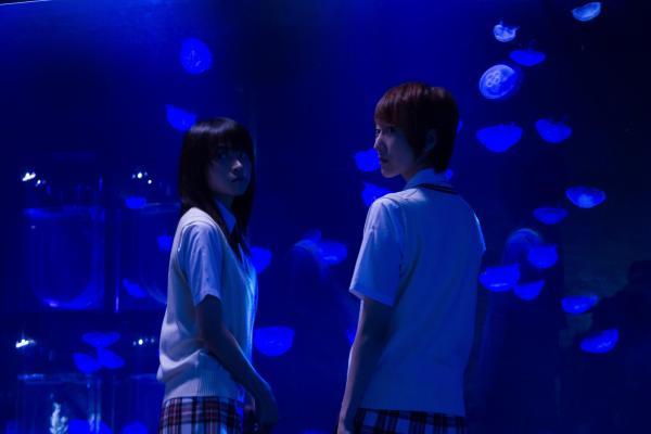 Jellyfish_main_convert_20130720140052.jpg